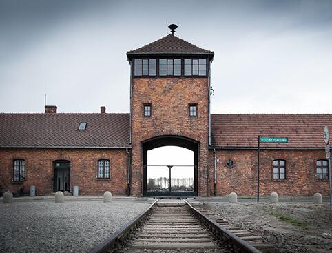 Auschwitz & Birkenau + Hidden Treasures Walking Tour