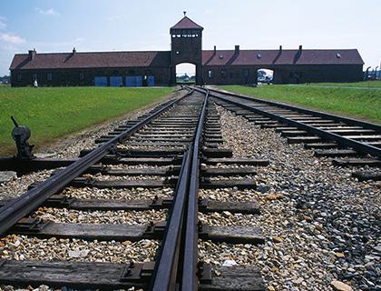 Auschwitz + Birkenau & Wieliczka Salt Mine in One Day