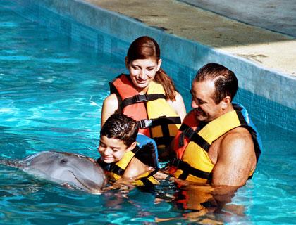Dolphin Encounter Mayan Riviera - Puerto Aventuras