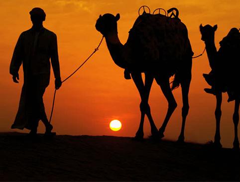 Half Day Sun Rise Jeep Safari from Hurghada