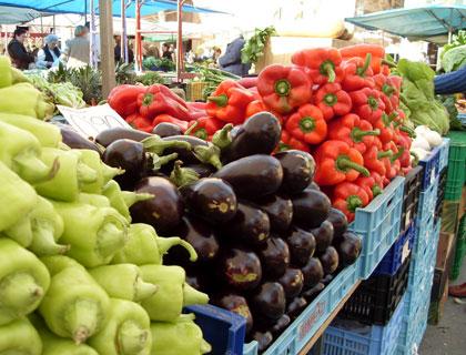 Sineu Market Trip