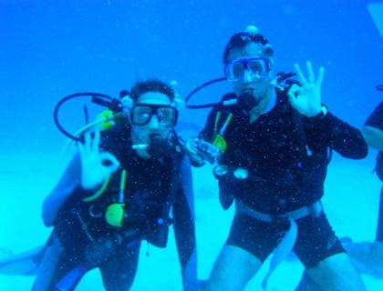 Underwater Safari Tour