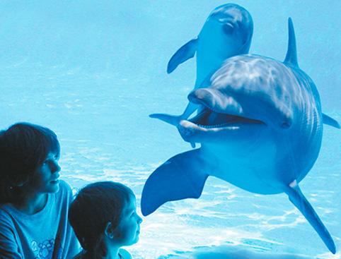Aqualand Costa Adeje Waterpark