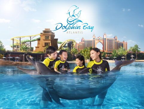 Atlantis The Palm, Dubai - Dolphin Experiences
