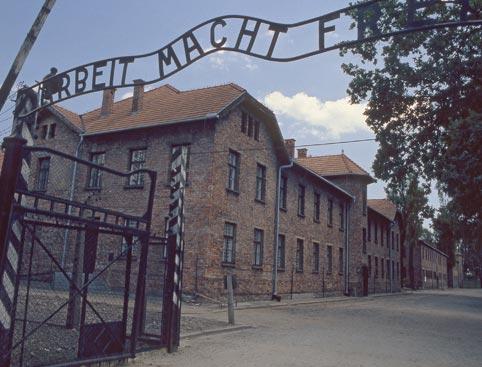 Auschwitz + Birkenau Tour