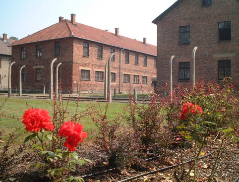 Auschwitz & Birkenau * PRIVATE Tours *