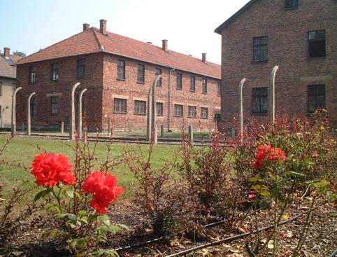 Auschwitz & Birkenau * PRIVATE Tours *