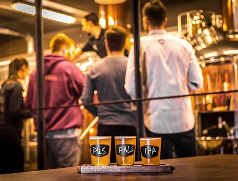 Reykjavik Beer & Brewery Tour