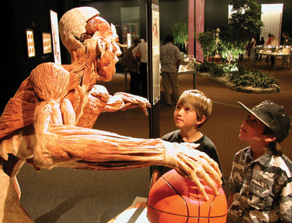 Body Worlds Amsterdam – Skip the Line Admission