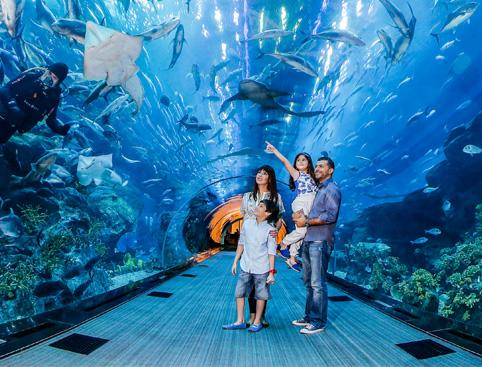 At The Top, Burj Khalifa + Dubai Aquarium