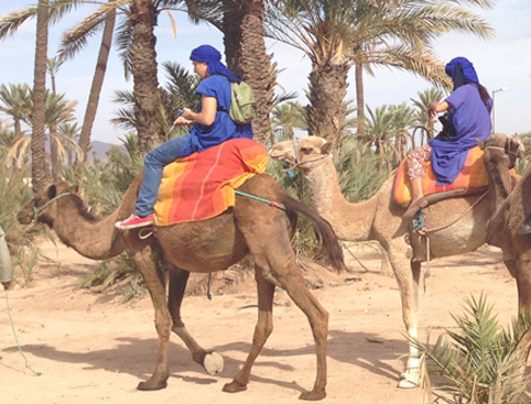 Camel Ride In Marrakech
