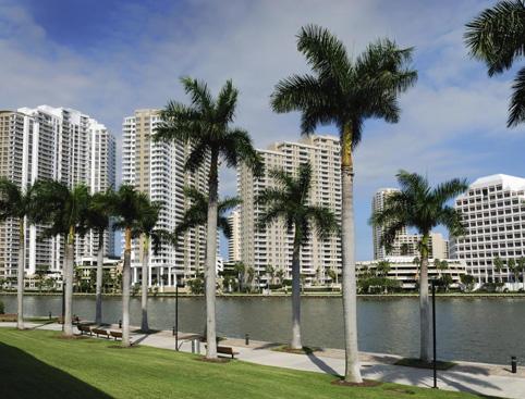 Miami Tour + Celebrity Homes & Star Island Cruise