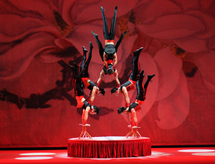 Chinese Acrobatics - First Class Tickets - Private Tour