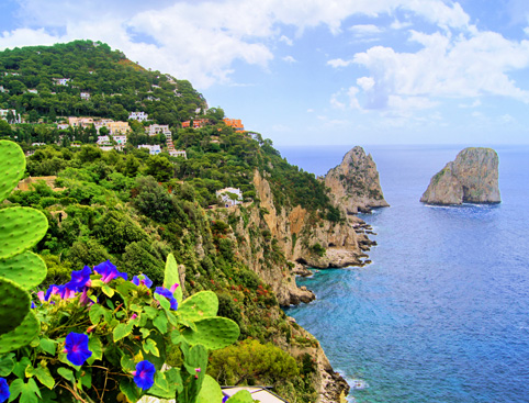 Day Trip to Capri & Anacapri From Sorrento
