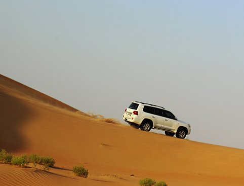 desert-safari-bbq