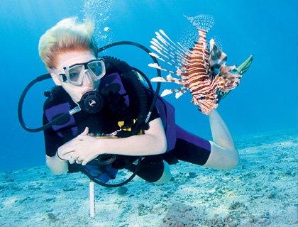 Ocean College Discover Scuba Diving - Half Day
