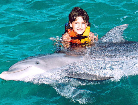 Dolphin Encounter at Isla Mujeres