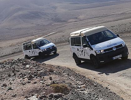 4x4 Safari Adventure