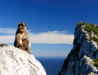 Gibraltar Break Full Day Tour - From Algarve