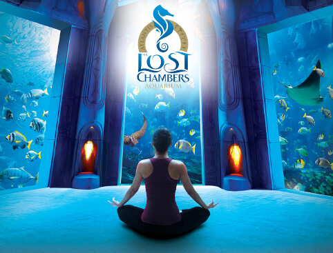 Atlantis The Palm – The Lost Chambers Aquarium