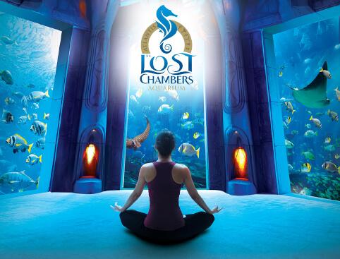 Atlantis The Palm – The Lost Chambers Aquarium
