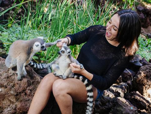 Oasis Wildlife Park Fuerteventura
