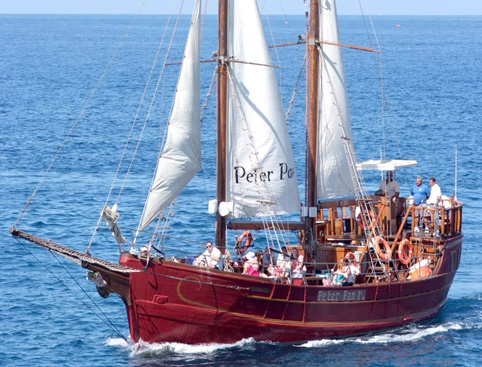 Peter Pan Whale Watching Sailing Trip