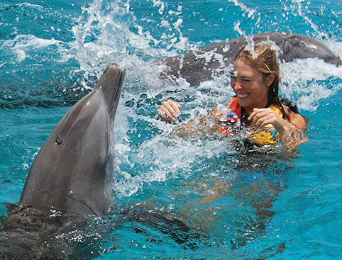 Swim with Dolphins Isla Mujeres - Royal Swim VIP