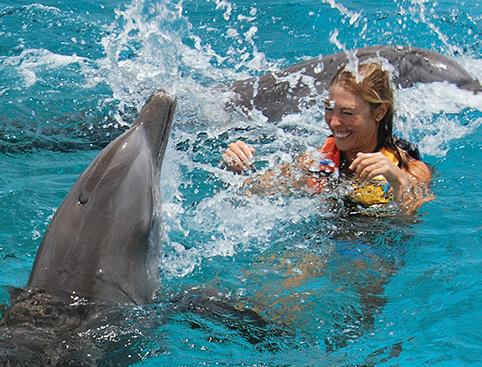 Swim with Dolphins Isla Mujeres - Royal Swim VIP