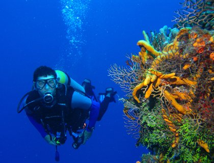 Scuba Diving - from Marmaris