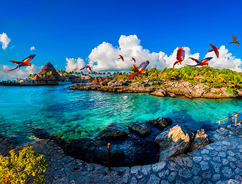 Xcaret Eco-Waterpark Excursion -  Mayan Riviera (With Transport)