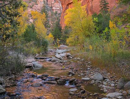 Zion National Park Luxury Bus Tour