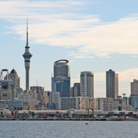 Auckland Morning City Highlights